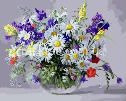 Картинки полевых цветов   красивые и увлекательные (3)