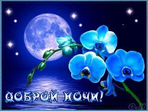 Картинки приятных снов и доброй ночи 026