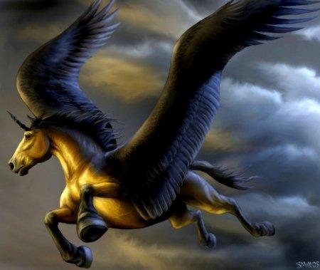 Картинки про лошадей с крыльями и рогом001