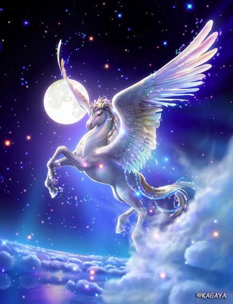 Картинки про лошадей с крыльями и рогом005