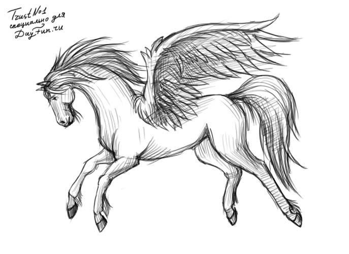 Картинки про лошадей с крыльями и рогом006