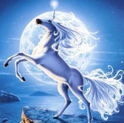 Картинки про лошадей с крыльями и рогом009
