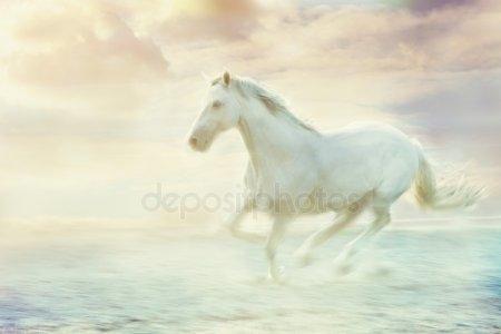 Картинки про лошадей с крыльями и рогом011
