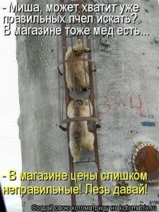 Картинки про мишу приколы и юмор 029