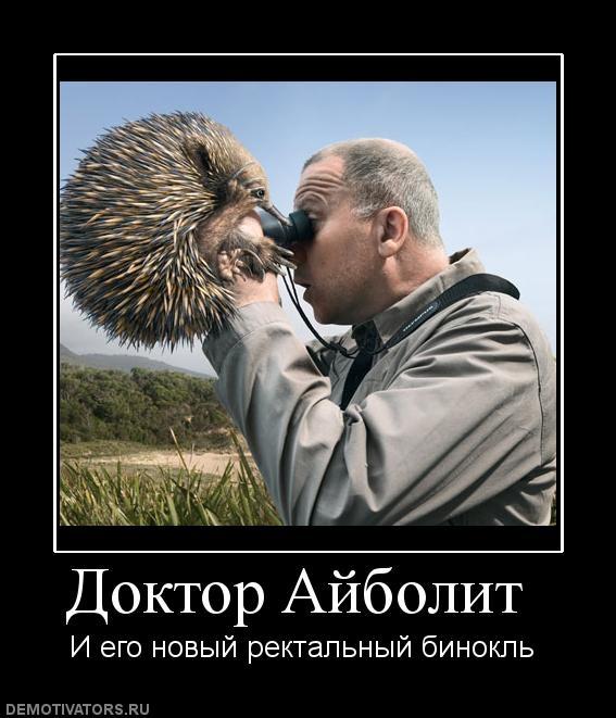 Картинки смешные Доктор Кто   подборка 025