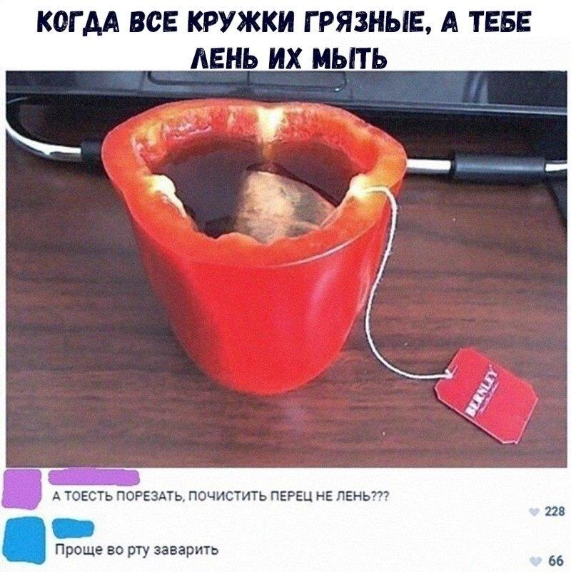 Картинки смешные про Ксюш   подборка001
