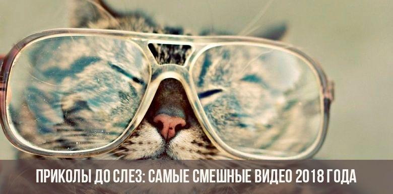 Картинки смешные про Ксюш   подборка009
