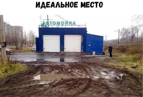 Картинки смешные про Ксюш   подборка016