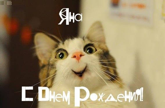 Картинки смешные про Яну   подборка 015