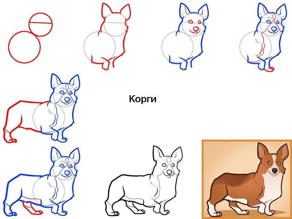 Картинки собака для детей нарисованные   картинки (3)