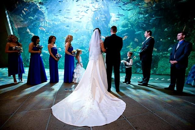 Картинки со свадебной тематикой   очень красивые 005