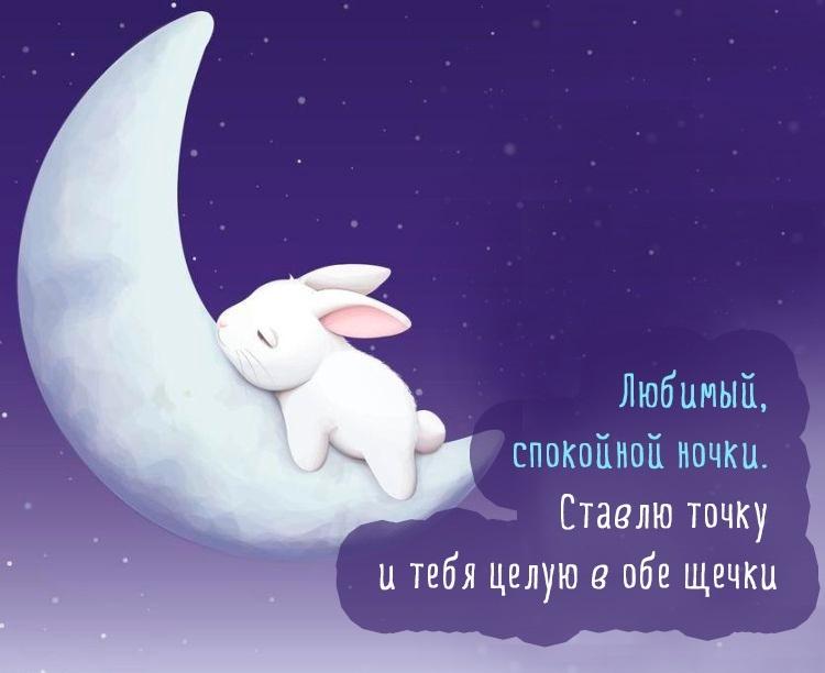 Картинки спокойной ночи пупсик с надписями 020