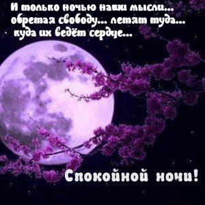 Картинки спокойной ночи   смотреть бесплатно 021