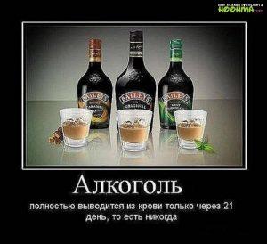 Картинки с алкоголем прикольные и интересные (24)