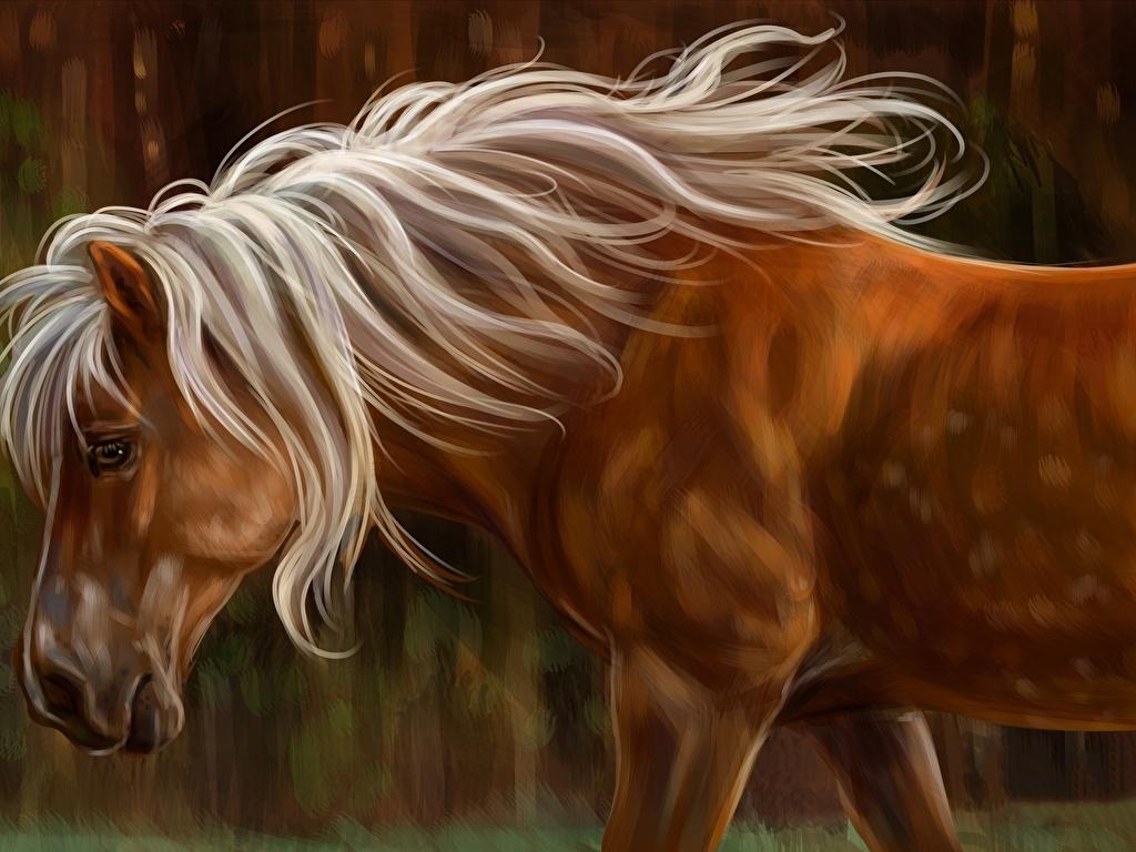 Картинки с лошадьми на телефон   скачать бесплатно (30)