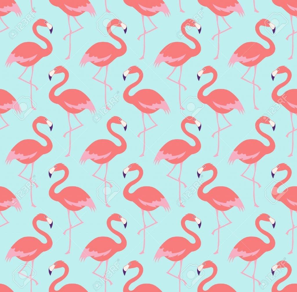Картинки с фламинго на заставку   подборка (14)