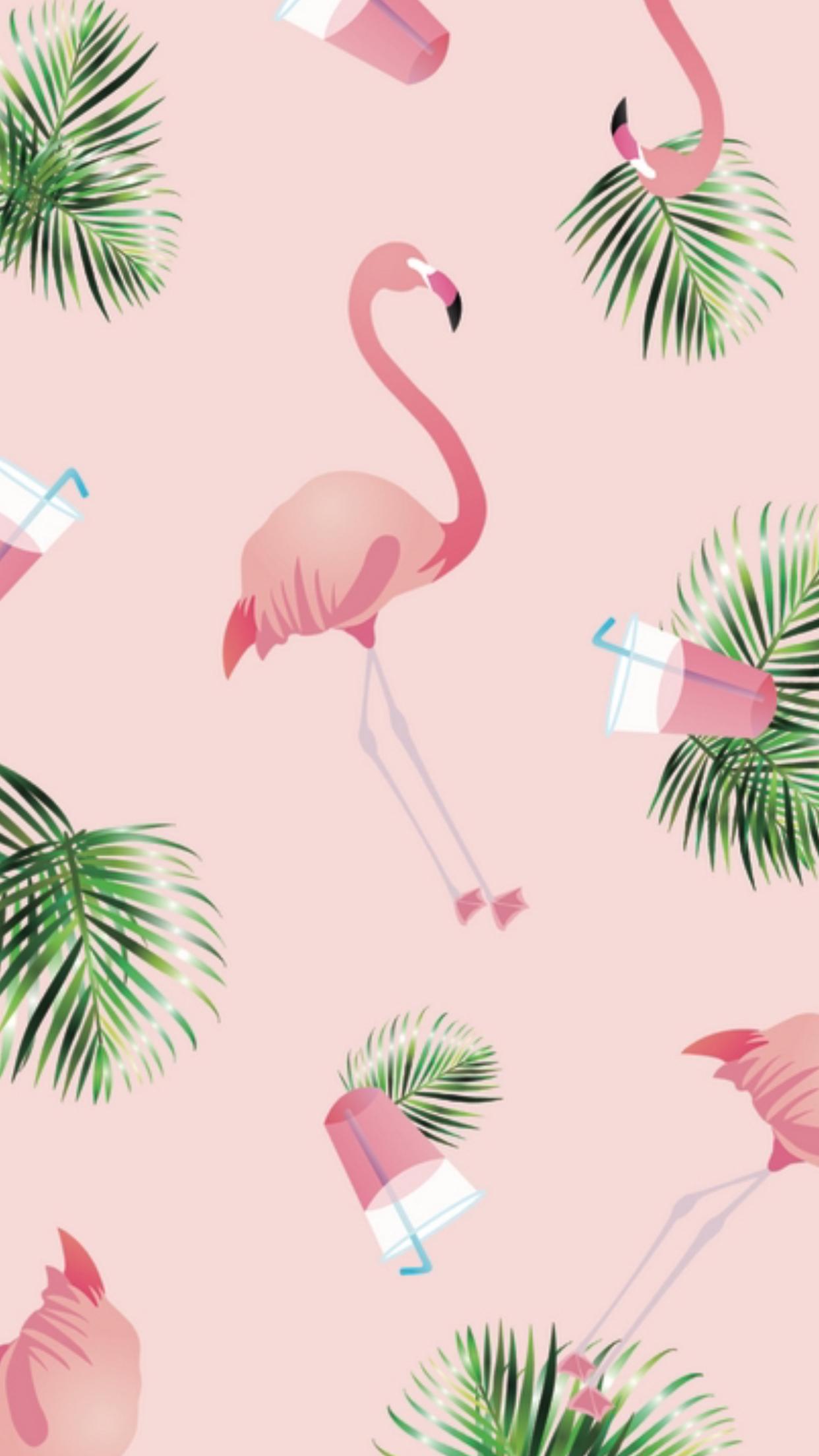 Картинки с фламинго на заставку   подборка (15)