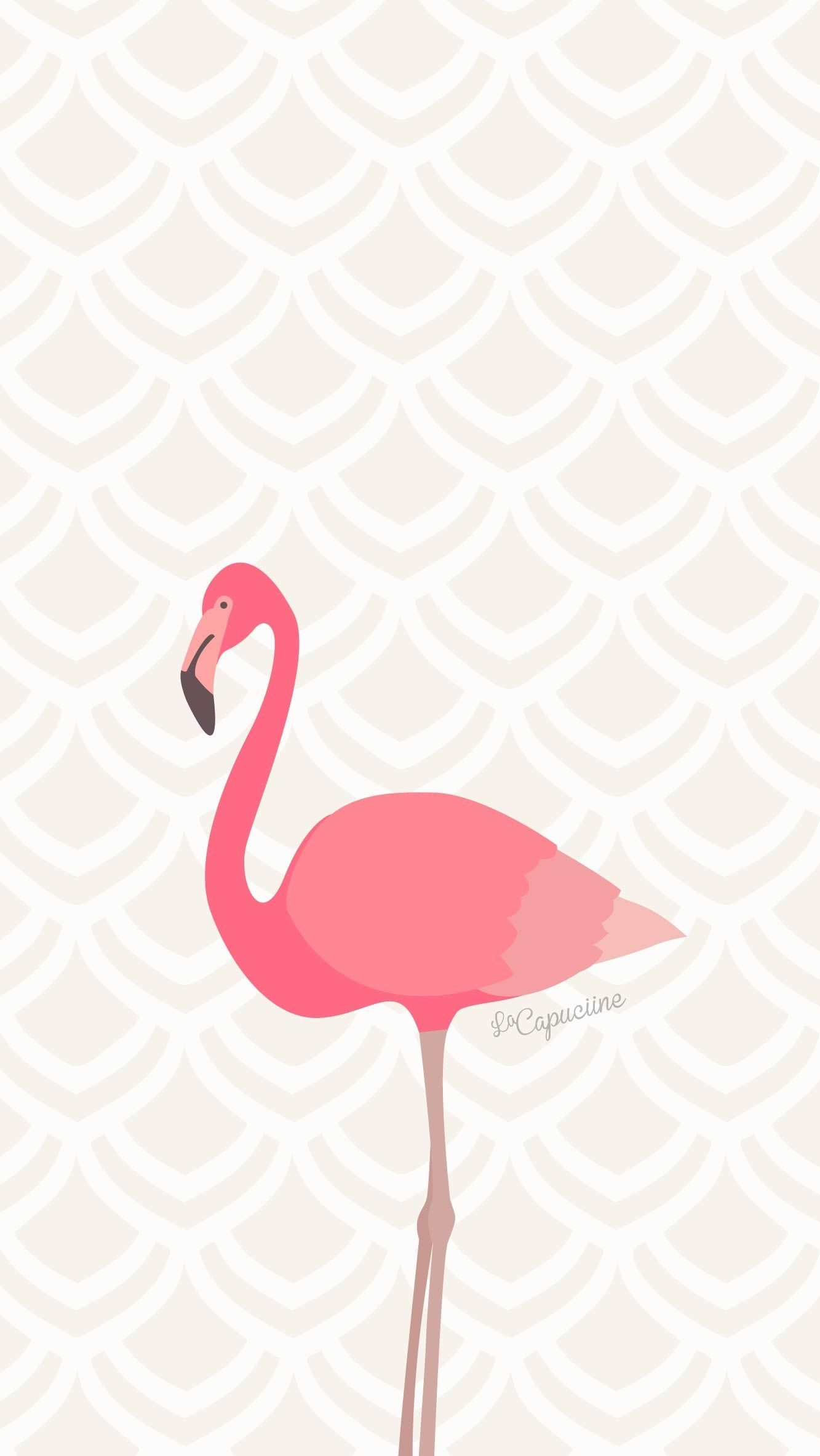 Картинки с фламинго на заставку   подборка (20)