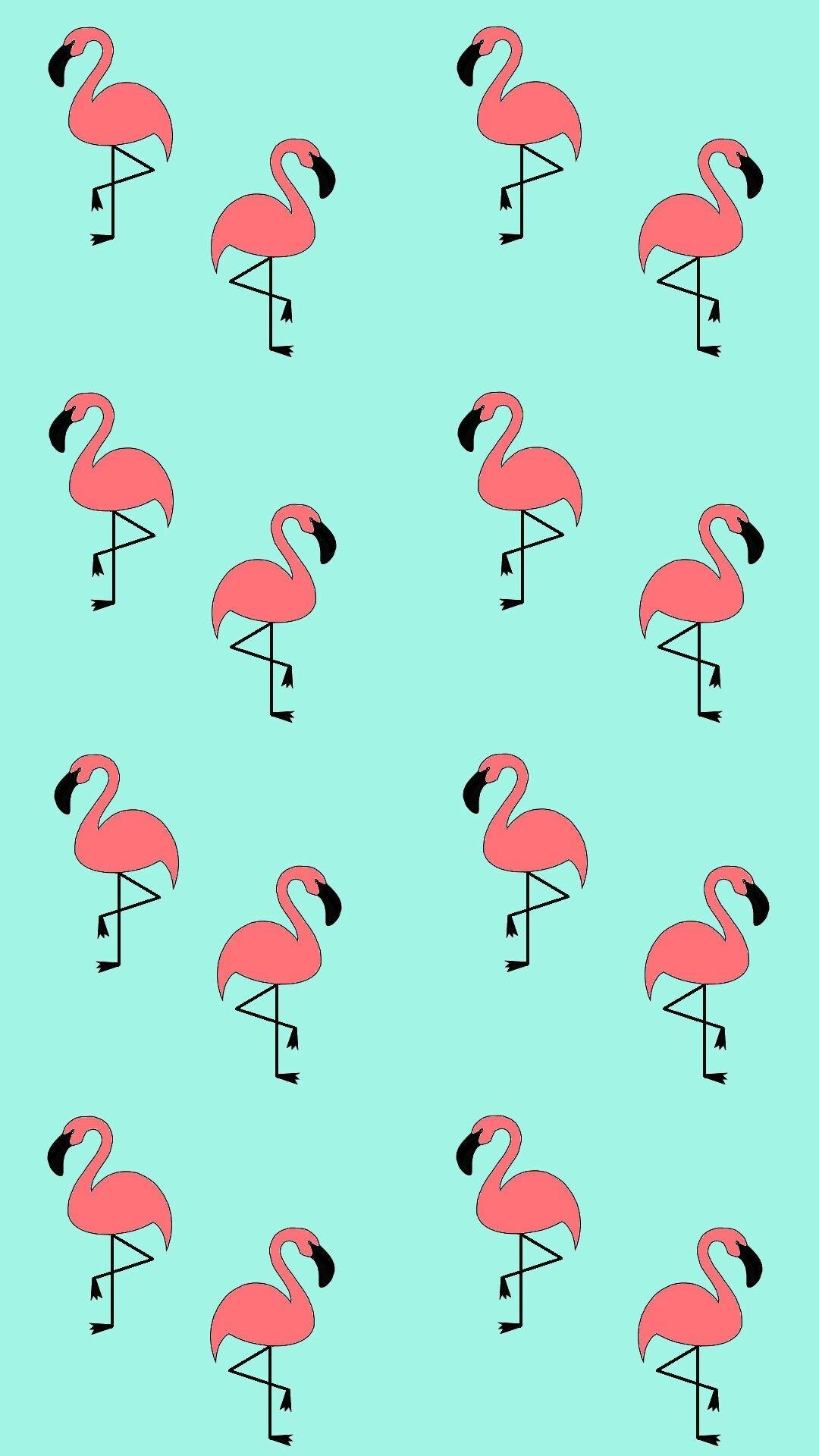 Картинки с фламинго на заставку   подборка (23)