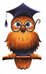 Картинки умной совы в очках с книгами   подборка (29)
