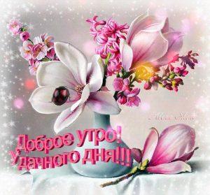 Картинки хорошего дня цветы   лучшие октрытки 023