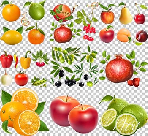 Клипарт на прозрачном фоне ягоды 019