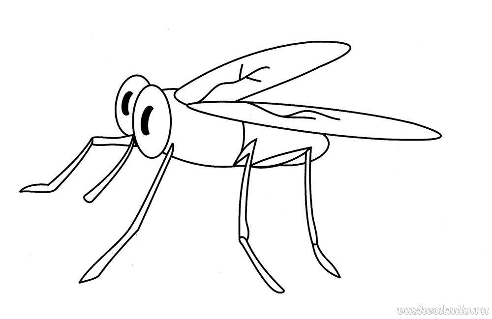 Картинки для детей комарики