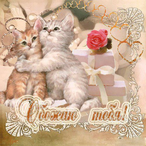 Февраля аппликация, открытки котик я тебя люблю