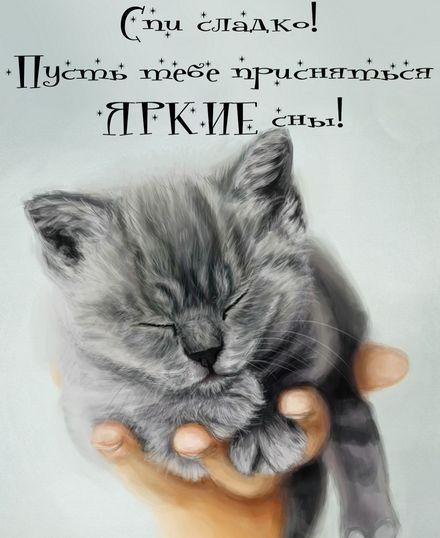 Котята спокойной ночи картинки и открытки (11)