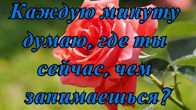 Красивая картинка любимый не грусти 010