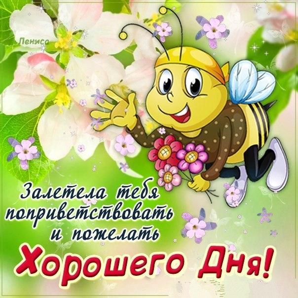 Красивая открытка с добрым утром мама 006
