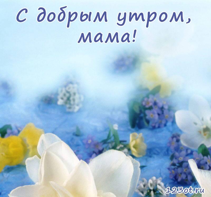 Красивая открытка с добрым утром мама 008