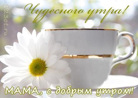 Красивая открытка с добрым утром мама 011
