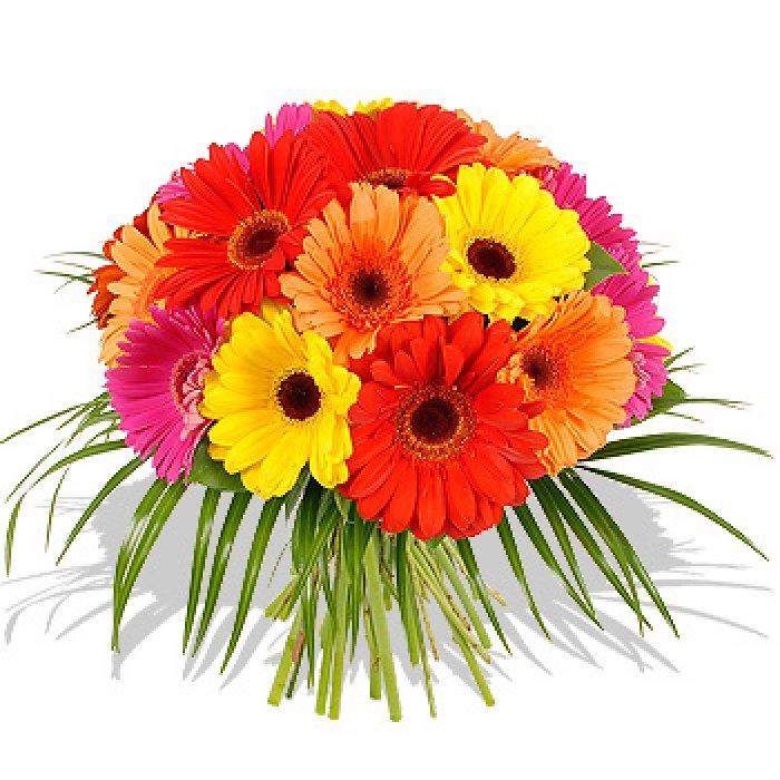 Крутые картинки, картинки с днем рождения женщине цветы герберы