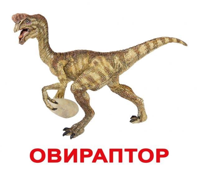 Красивые динозавры фото и описание   подборка 001