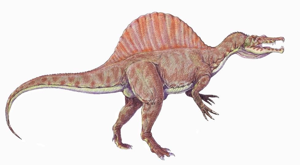 Красивые динозавры фото и описание   подборка 002