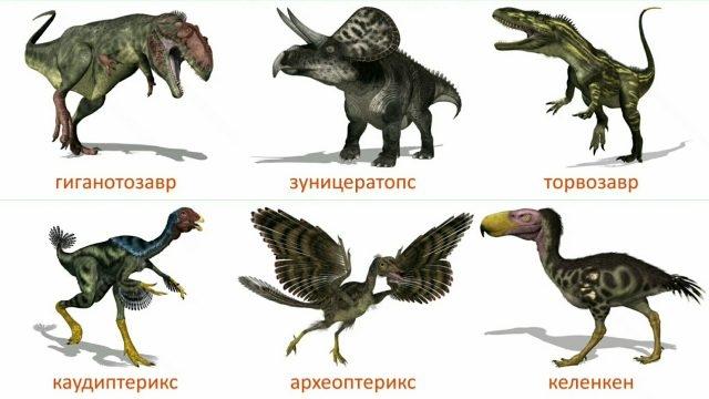 Красивые динозавры фото и описание   подборка 005
