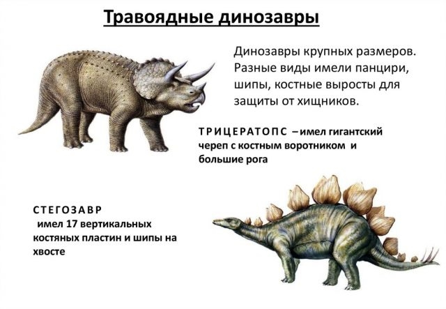 Красивые динозавры фото и описание   подборка 006