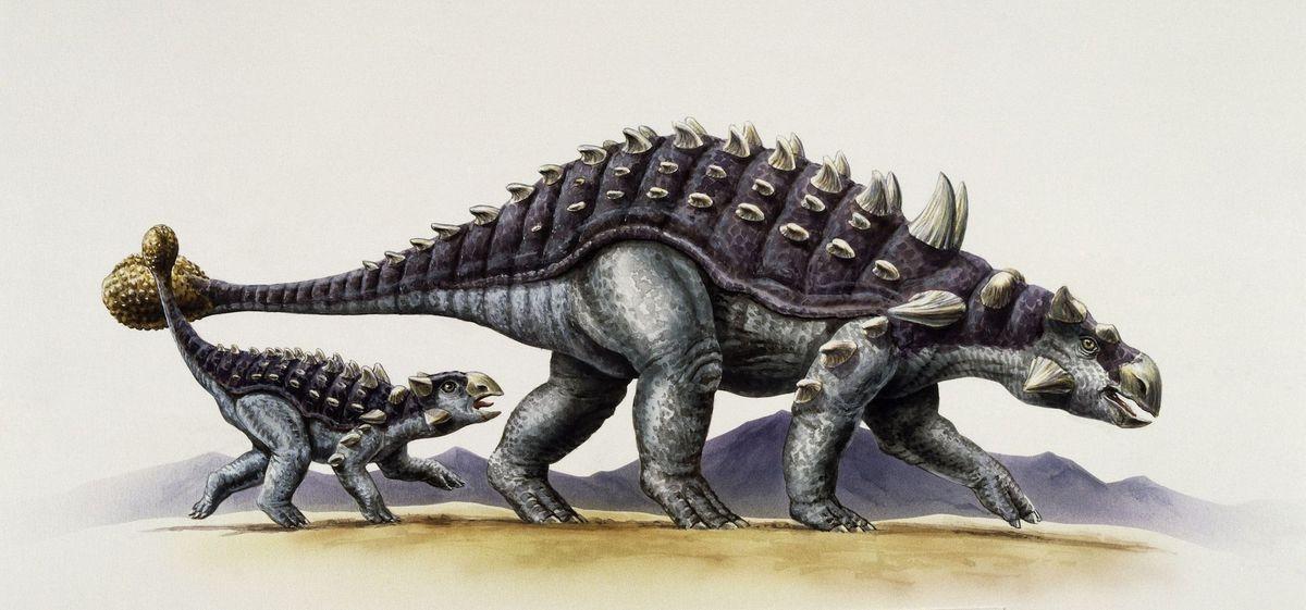 Красивые динозавры фото и описание   подборка 018