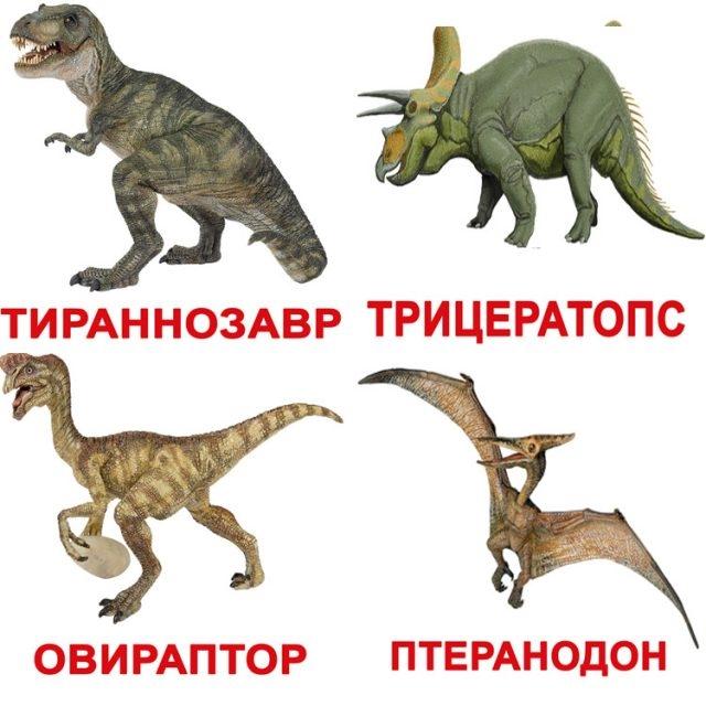 Красивые динозавры фото и описание   подборка 022