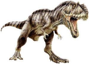 Красивые динозавры фото и описание   подборка 028