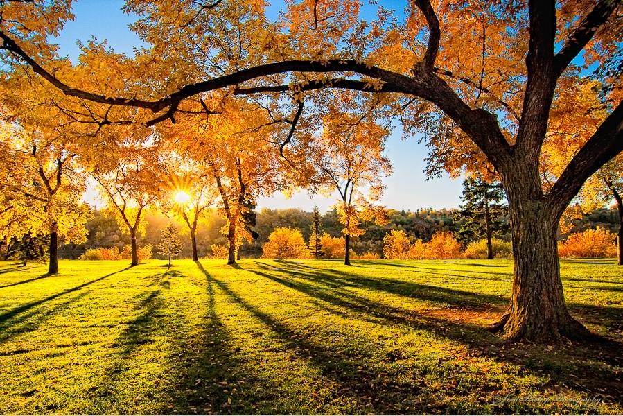Красивые и яркие картинки про осень005