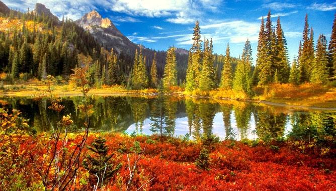 Красивые и яркие картинки про осень010
