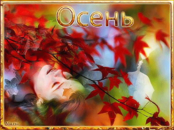 Красивые и яркие картинки про осень019