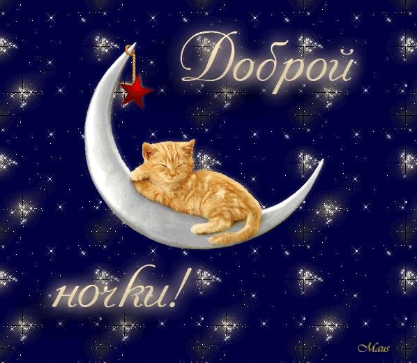 Красивые картинки Лиза спокойной ночи019