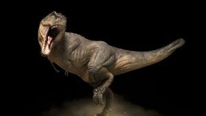Красивые картинки Рекс динозавр018