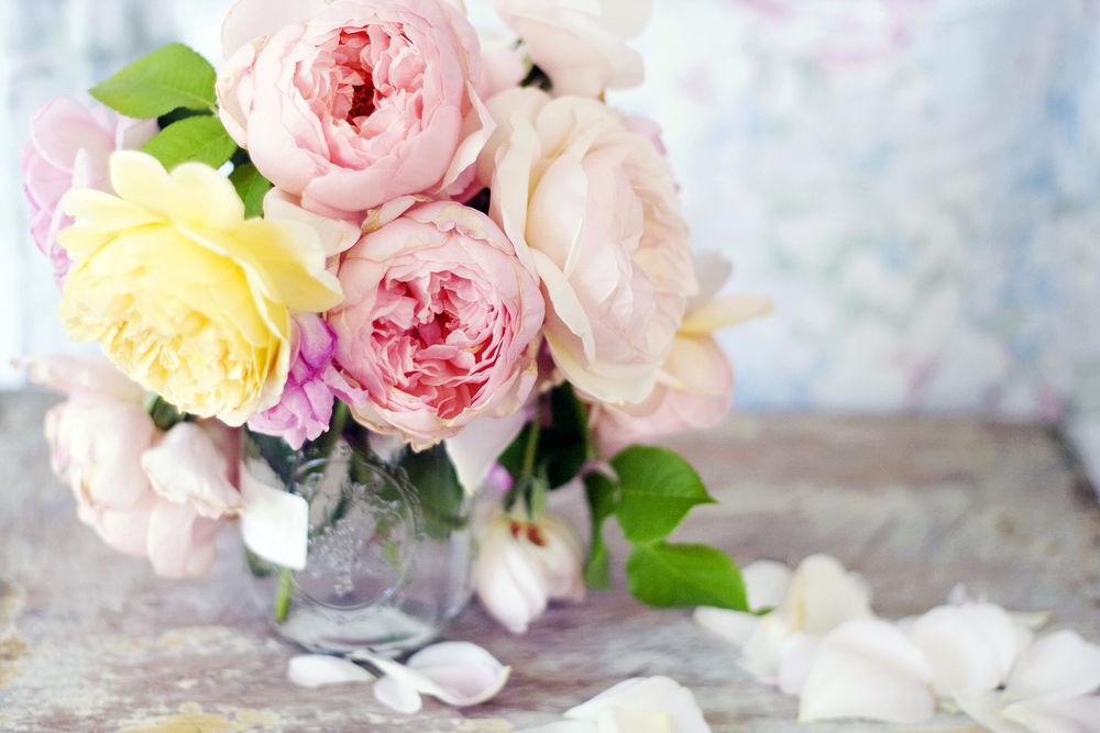 Красивые картинки Цветы в вазе на рабочий стол (1)