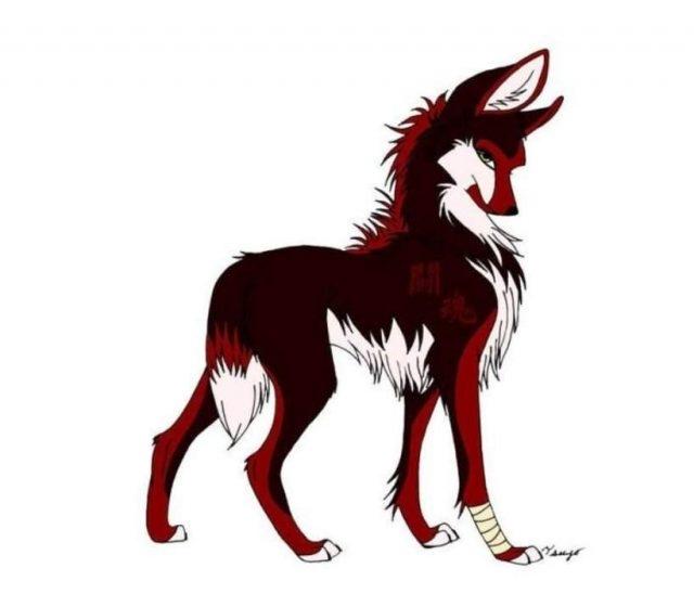 Красивые картинки аниме белого волка027