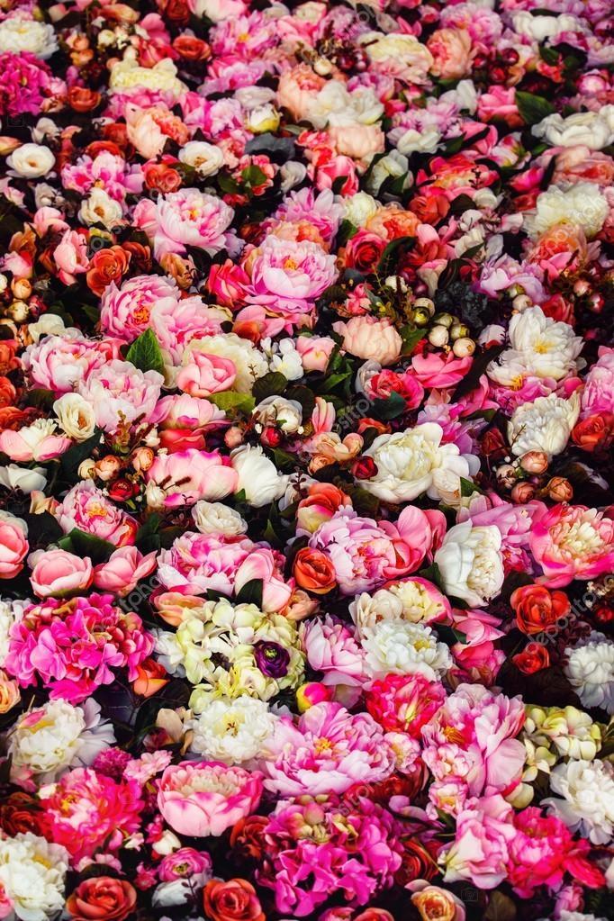 Красивые картинки вертикальные цветы001