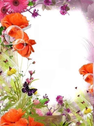 Красивые картинки вертикальные цветы005